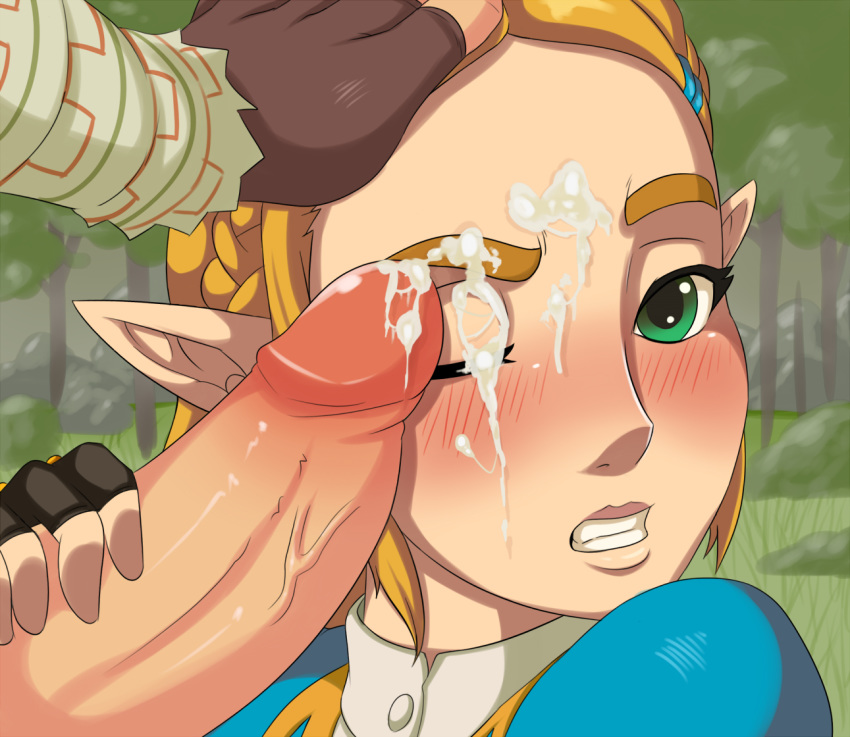 breath of gerudo fanart wild the Who is patchy the pirate